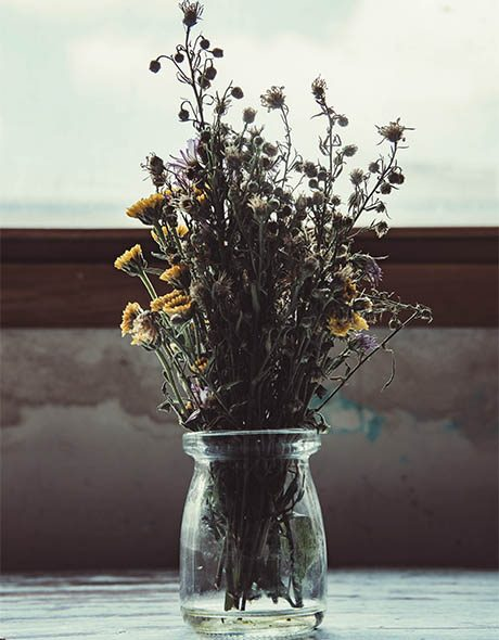 terapia-floral-esencias-de-la-atlantida-cosmic-wellness